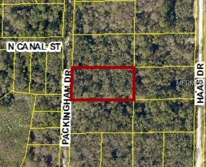 7392 Packingham Drive, Webster, FL 33597 (MLS #W7809851) :: Griffin Group