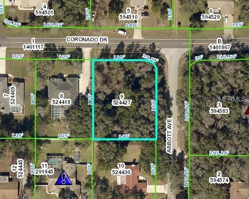 Coronado Drive, Spring Hill, FL 34609 (MLS #W7809885) :: RE/MAX Realtec Group