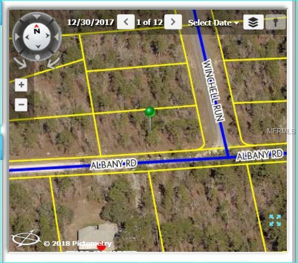 13205 Albany Road, Weeki Wachee, FL 34614 (MLS #W7810342) :: The Duncan Duo Team