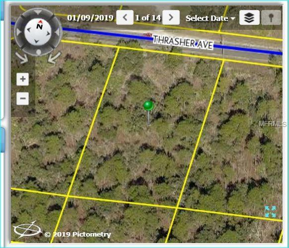 10394 Thrasher Avenue, Weeki Wachee, FL 34614 (MLS #W7810647) :: RE/MAX Realtec Group