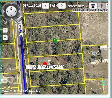 11158 Horned Owl Road, Weeki Wachee, FL 34614 (MLS #W7810677) :: RE/MAX Realtec Group