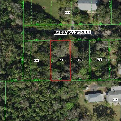 Lot 2 Barbara Street, New Port Richey, FL 34652 (MLS #W7810739) :: Mark and Joni Coulter | Better Homes and Gardens
