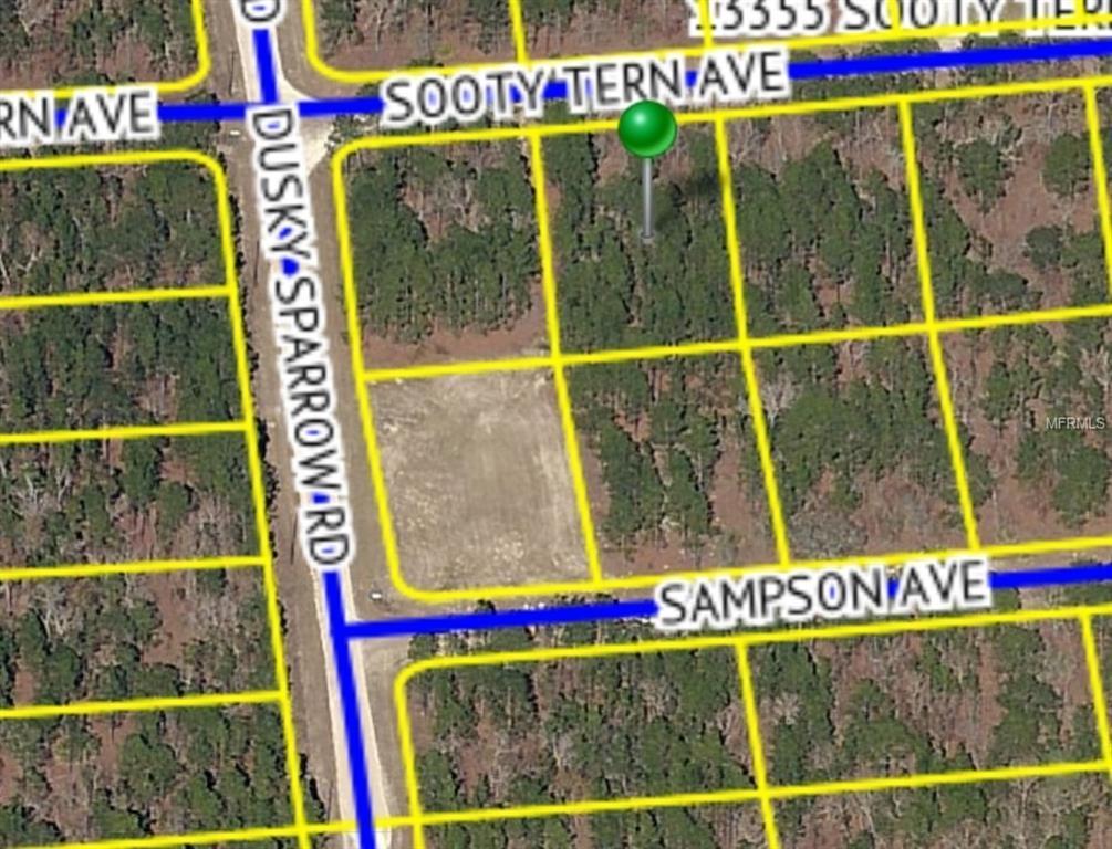 13336 Sooty Tern Avenue - Photo 1
