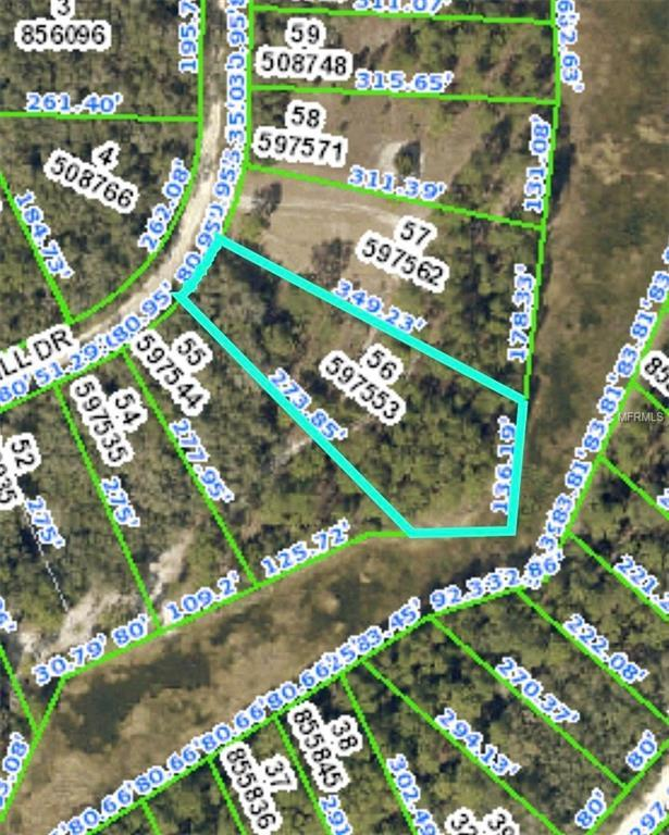 Address Not Published, Webster, FL 33597 (MLS #W7811613) :: The Duncan Duo Team