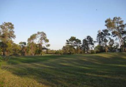 4988 Kirkwood Avenue, Spring Hill, FL 34608 (MLS #W7811694) :: Burwell Real Estate