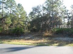 0 Parrot Road, Weeki Wachee, FL 34614 (MLS #W7811784) :: Gate Arty & the Group - Keller Williams Realty