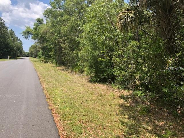 3317 S Lee Way, Homosassa, FL 34448 (MLS #W7812063) :: The Duncan Duo Team