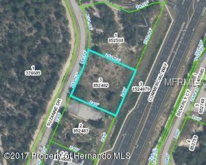 Address Not Published, Spring Hill, FL 34607 (MLS #W7812295) :: Zarghami Group