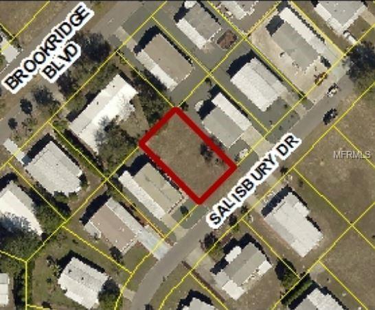 9105 Salisbury Drive, Brooksville, FL 34613 (MLS #W7812382) :: The Duncan Duo Team