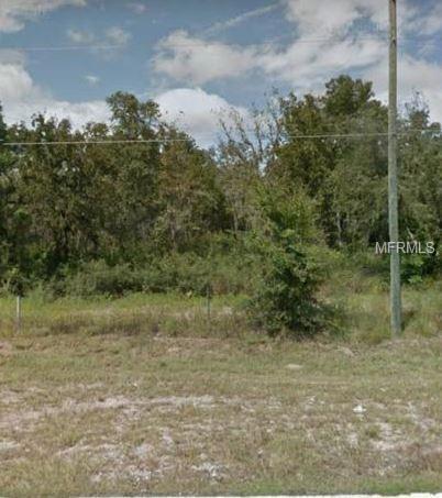 11343 Centralia Road, Weeki Wachee, FL 34614 (MLS #W7812584) :: The Duncan Duo Team