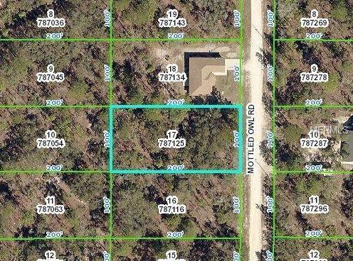 15235 Mottled Owl Road, Weeki Wachee, FL 34614 (MLS #W7812589) :: RE/MAX Realtec Group