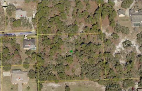 10480 Golden Avenue, Weeki Wachee, FL 34613 (MLS #W7812594) :: RE/MAX Realtec Group
