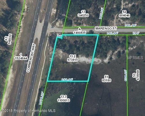 9468 Marengo Street, Weeki Wachee, FL 34613 (MLS #W7812612) :: The Duncan Duo Team