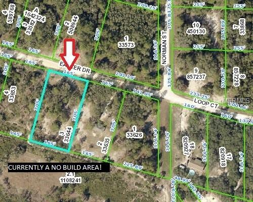 33224 Easter Drive, Webster, FL 33597 (MLS #W7812630) :: The Edge Group at Keller Williams