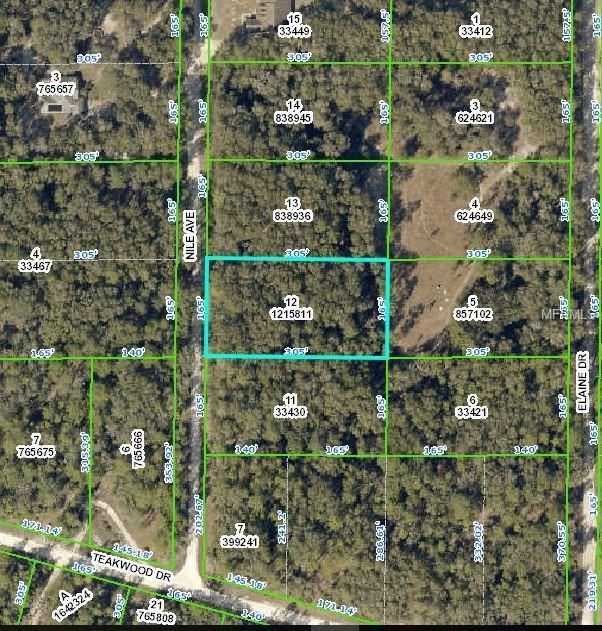 6332 Niles Avenue, Webster, FL 33597 (MLS #W7812661) :: The Edge Group at Keller Williams