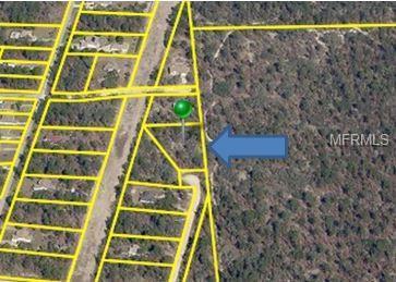 7465 Mandrake Road, Weeki Wachee, FL 34613 (MLS #W7812707) :: RE/MAX Realtec Group
