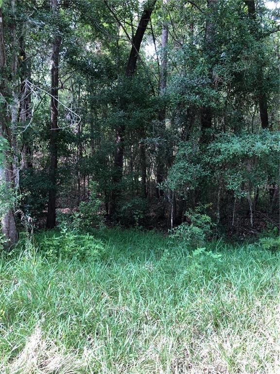 00 Chenoak Road, Brooksville, FL 34602 (MLS #W7812750) :: Cartwright Realty