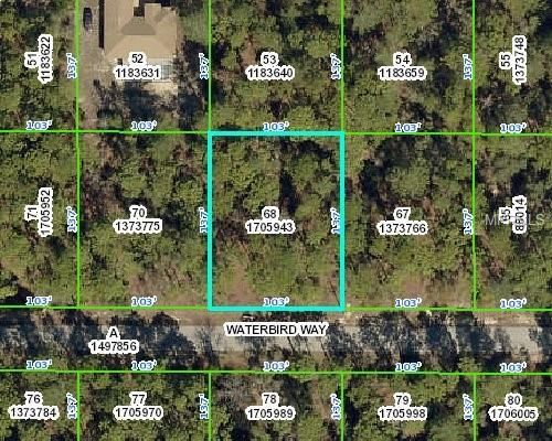 Waterbird Way, Weeki Wachee, FL 34613 (MLS #W7812808) :: Bustamante Real Estate