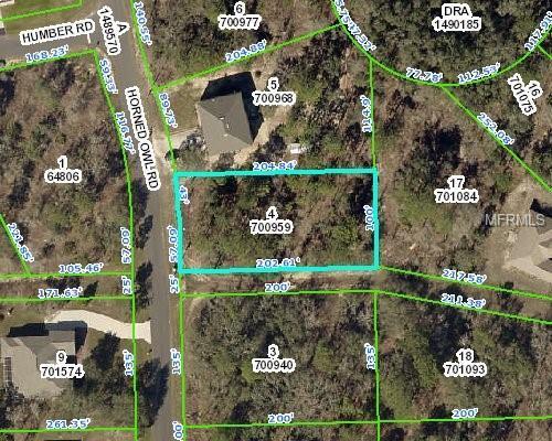 11268 Horned Owl Road, Weeki Wachee, FL 34614 (MLS #W7812812) :: RE/MAX Realtec Group