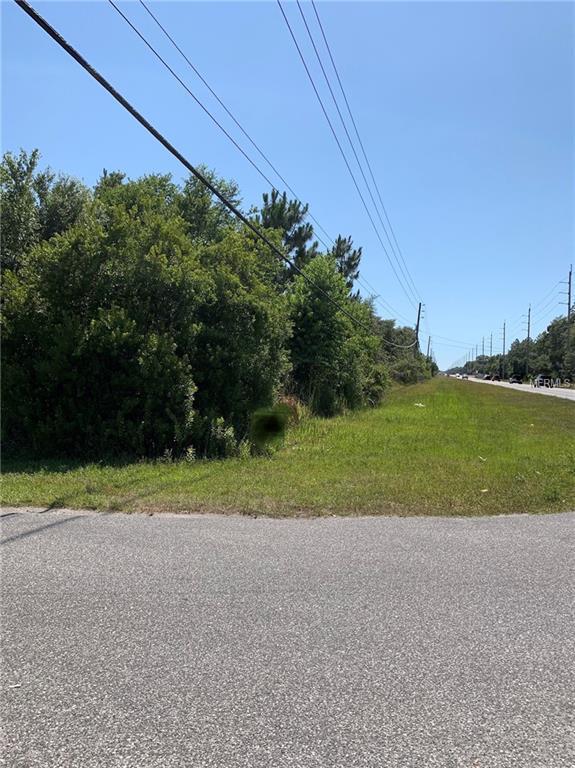 6784 W Grover Cleveland Boulevard, Homosassa, FL 34446 (MLS #W7813073) :: The Duncan Duo Team