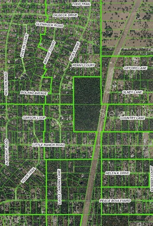 0 Little Ranch Rd. Street, Spring Hill, FL 34610 (MLS #W7813343) :: Cartwright Realty