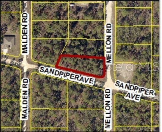 11285 Sandpiper Avenue, Weeki Wachee, FL 34614 (MLS #W7813390) :: Cartwright Realty