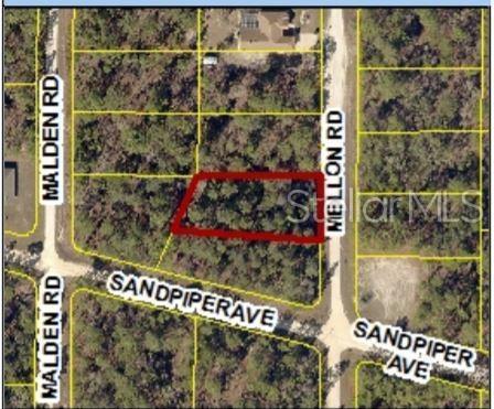 16099 Mellon Road, Weeki Wachee, FL 34614 (MLS #W7813394) :: Cartwright Realty