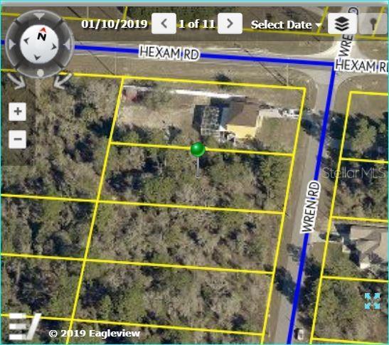 11039 Wren Road, Brooksville, FL 34613 (MLS #W7814309) :: Team 54
