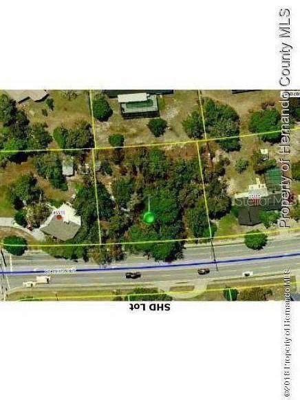 11522 Spring Hill Drive, Spring Hill, FL 34609 (MLS #W7814395) :: Team 54
