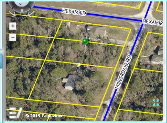 11041 Millerdale Road, Weeki Wachee, FL 34613 (MLS #W7814416) :: Team 54