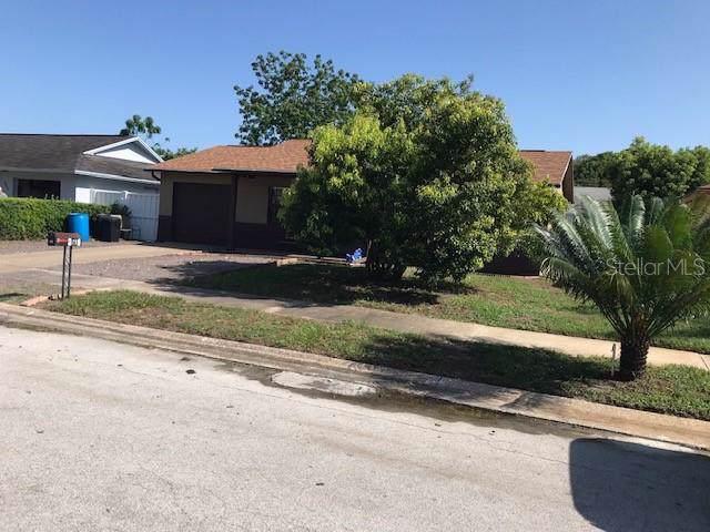8601 Zane Lane, Port Richey, FL 34668 (MLS #W7814469) :: Team Bohannon Keller Williams, Tampa Properties