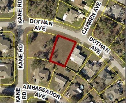 3323 Dothan Avenue, Spring Hill, FL 34609 (MLS #W7814512) :: Jeff Borham & Associates at Keller Williams Realty