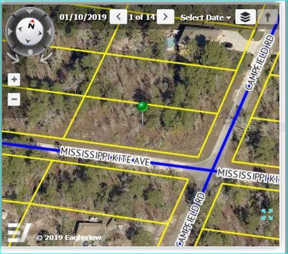 Mississippi Kite Avenue, Weeki Wachee, FL 34614 (MLS #W7814556) :: Team Pepka