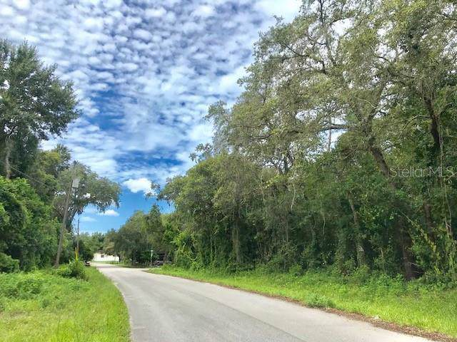 0 Poplar Street, New Port Richey, FL 34654 (MLS #W7814578) :: Bustamante Real Estate
