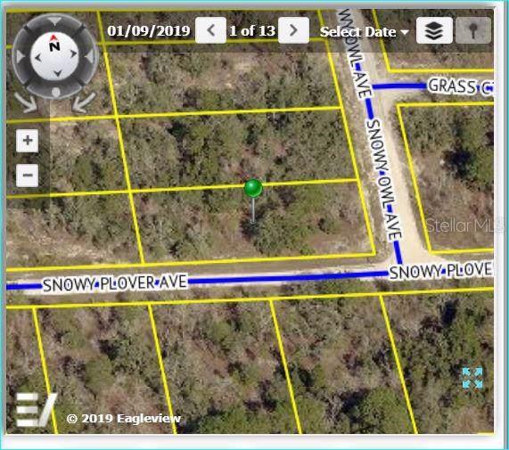 Address Not Published, Weeki Wachee, FL 34614 (MLS #W7814684) :: Godwin Realty Group
