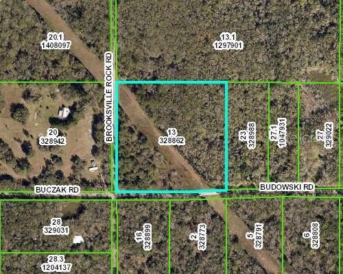 16271 Budowski Road, Brooksville, FL 34614 (MLS #W7814912) :: Godwin Realty Group