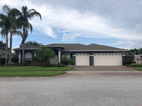 3736 Gaviota Drive, Ruskin, FL 33573 (MLS #W7815209) :: Bustamante Real Estate