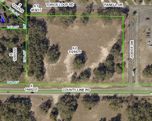 000 County Line Road, Spring Hill, FL 34609 (MLS #W7815422) :: Rabell Realty Group