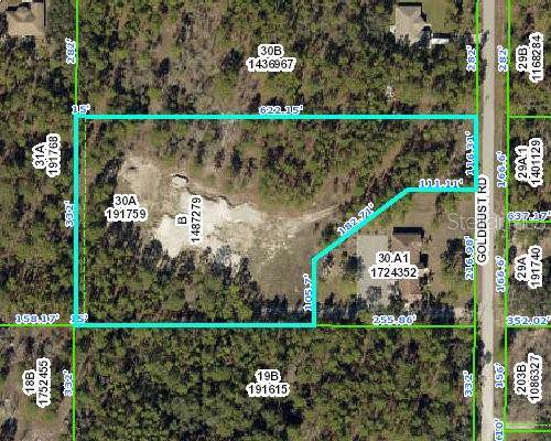 5411 Golddust Road, Spring Hill, FL 34609 (MLS #W7815443) :: Rabell Realty Group
