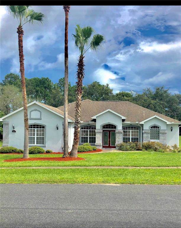 12041 Sapphire Drive, Spring Hill, FL 34609 (MLS #W7815447) :: Florida Real Estate Sellers at Keller Williams Realty