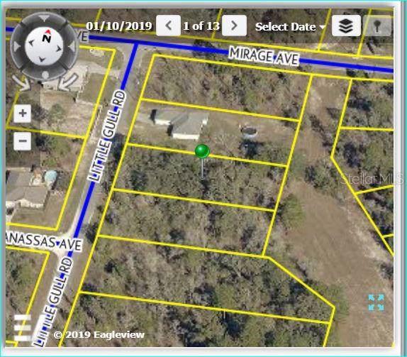11262 Little Gull Road, Weeki Wachee, FL 34614 (MLS #W7815503) :: Premium Properties Real Estate Services