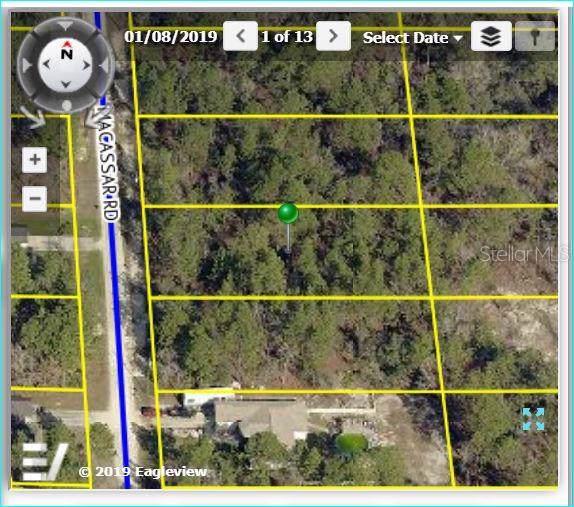 Macassar Road, Weeki Wachee, FL 34614 (MLS #W7815541) :: Cartwright Realty