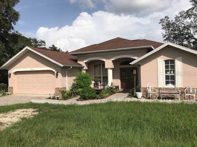 2304 Lema Drive, Spring Hill, FL 34609 (MLS #W7815544) :: Bustamante Real Estate
