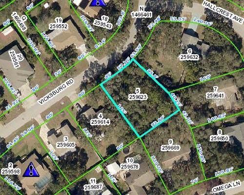 8440 Vicksburg Road, Spring Hill, FL 34608 (MLS #W7815551) :: Dalton Wade Real Estate Group