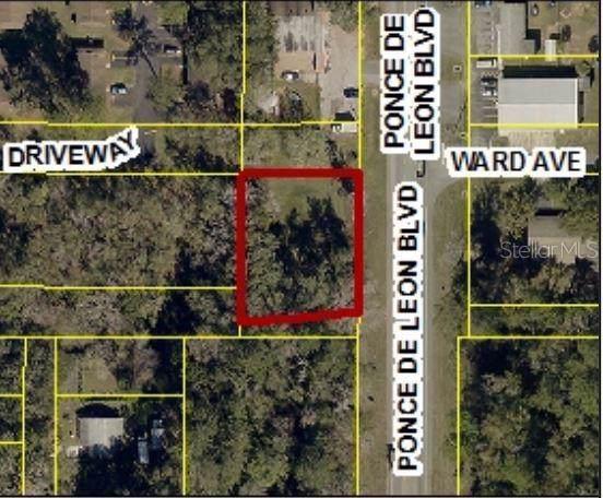 Ponce De Leon Boulevard Lots 32 & 33, Brooksville, FL 34601 (MLS #W7815568) :: GO Realty