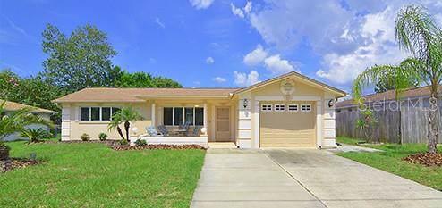 6101 Moog Road, New Port Richey, FL 34653 (MLS #W7815858) :: Bustamante Real Estate