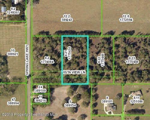 Vista View Lane, Brooksville, FL 34602 (MLS #W7816042) :: Premier Home Experts