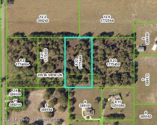 Vista View Lane, Brooksville, FL 34602 (MLS #W7816044) :: Premier Home Experts