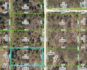 18203 Ramsey Road, Weeki Wachee, FL 34614 (MLS #W7816126) :: Ideal Florida Real Estate