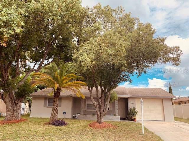 7713 Seashore Drive, Port Richey, FL 34668 (MLS #W7816308) :: Cartwright Realty